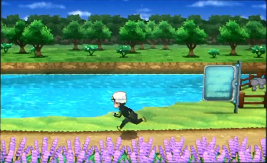 New Gray Pokemon?